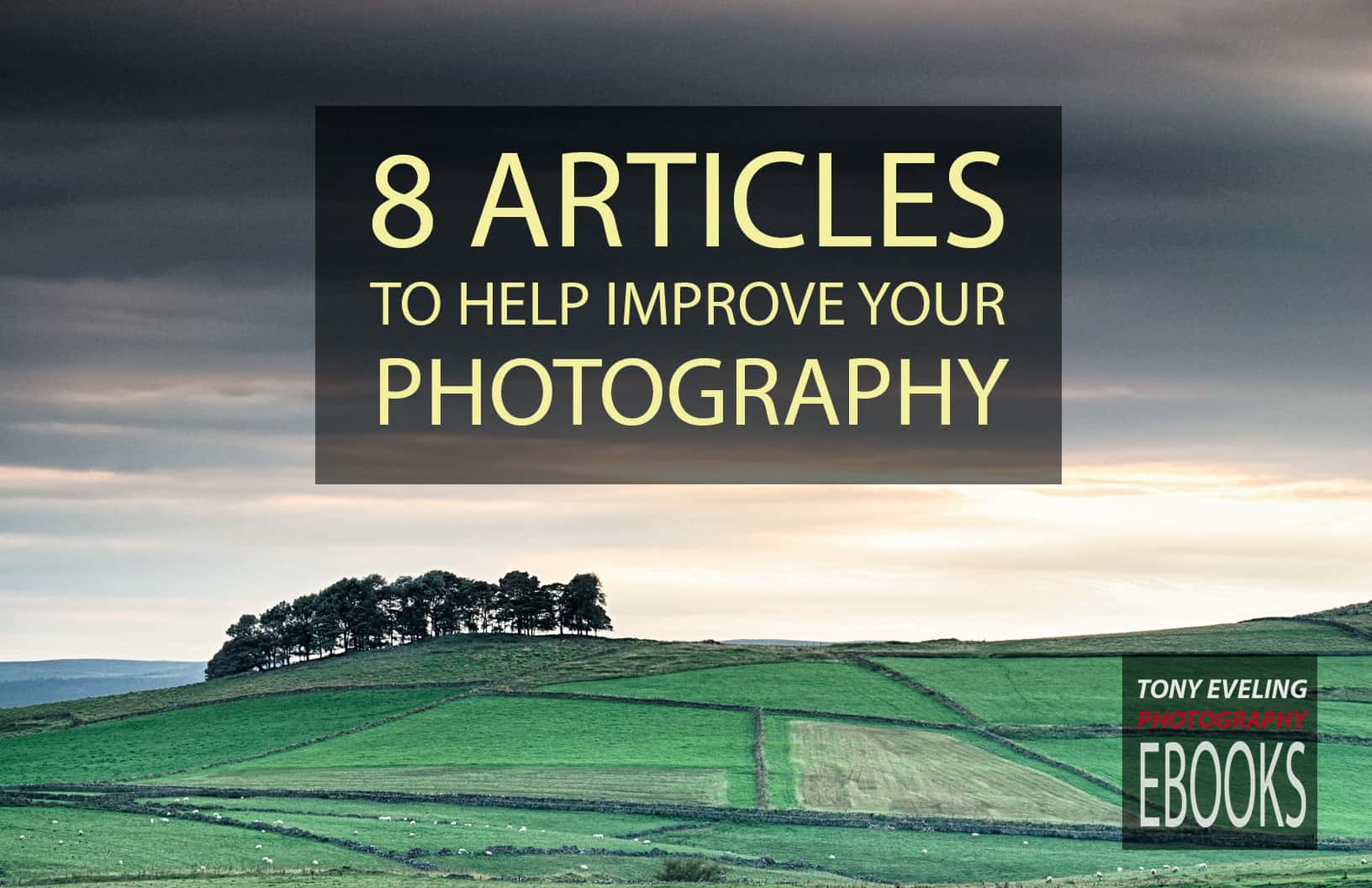 Free ebook -- 8 articles for better photography