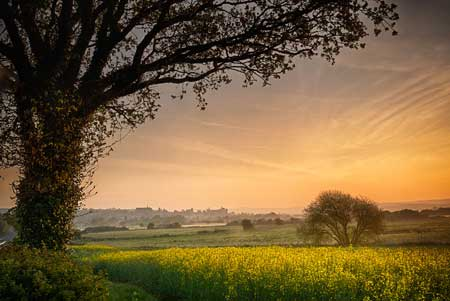 View towards Arundel, West Sussex at dawn, England, UK