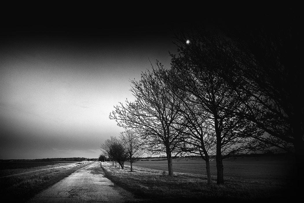 Narrow Lane in essex, England, UK