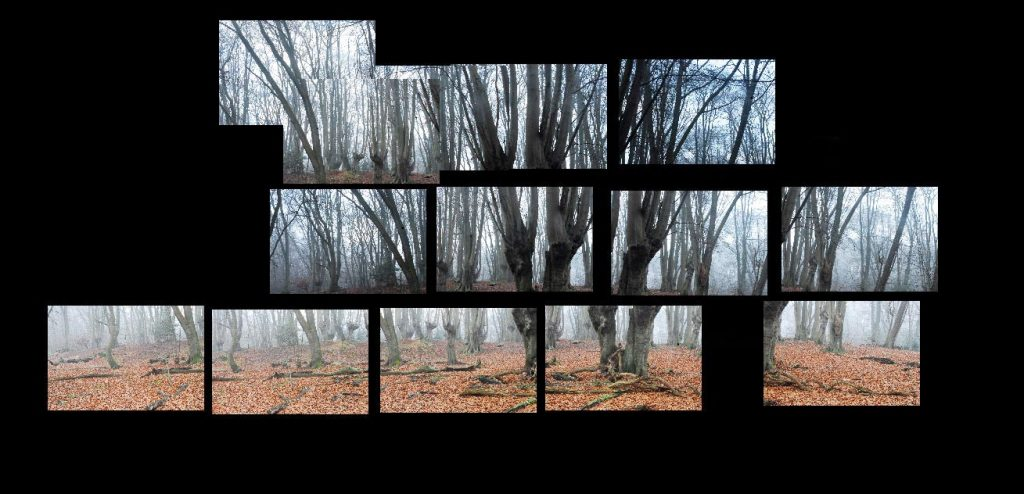 Each individual image that was required to create the panoramic image that you see below