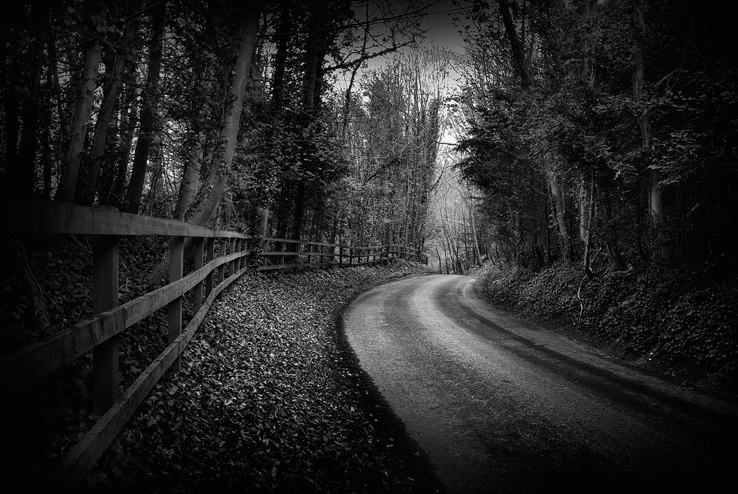 Black and white photograph of a small road through the woods, in Wiltshire, England, UK