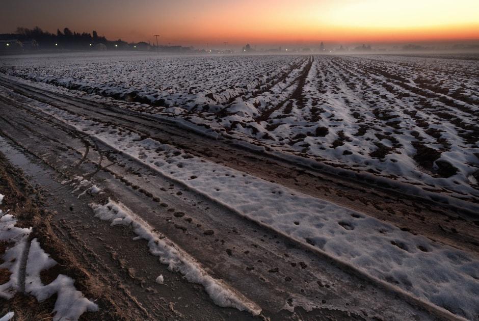 Frozen field, Slovenia, close to the Hungary border post, Slovenia