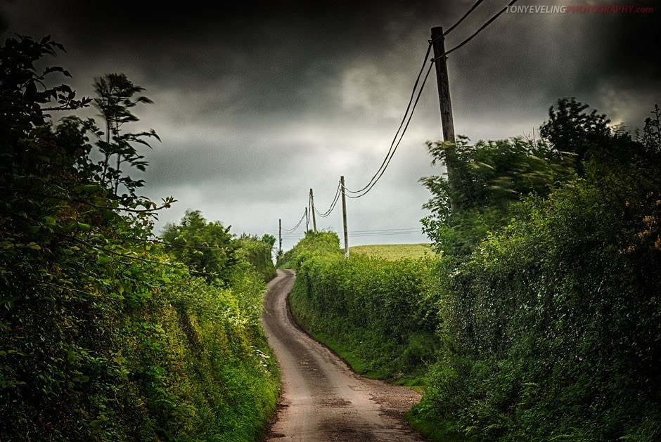 Narrow countrylane lined with telegraph poles, Somerset countryside, England, UK