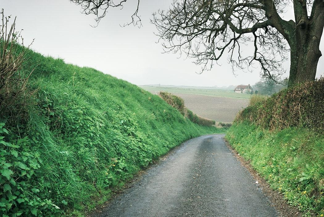 Rural country lane near Graffham, West Sussex, England, UK