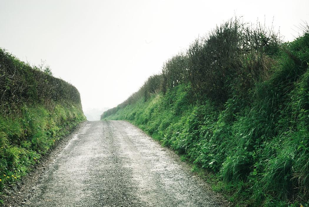 Rural lane, near Graffham, West Sussex, England, UK
