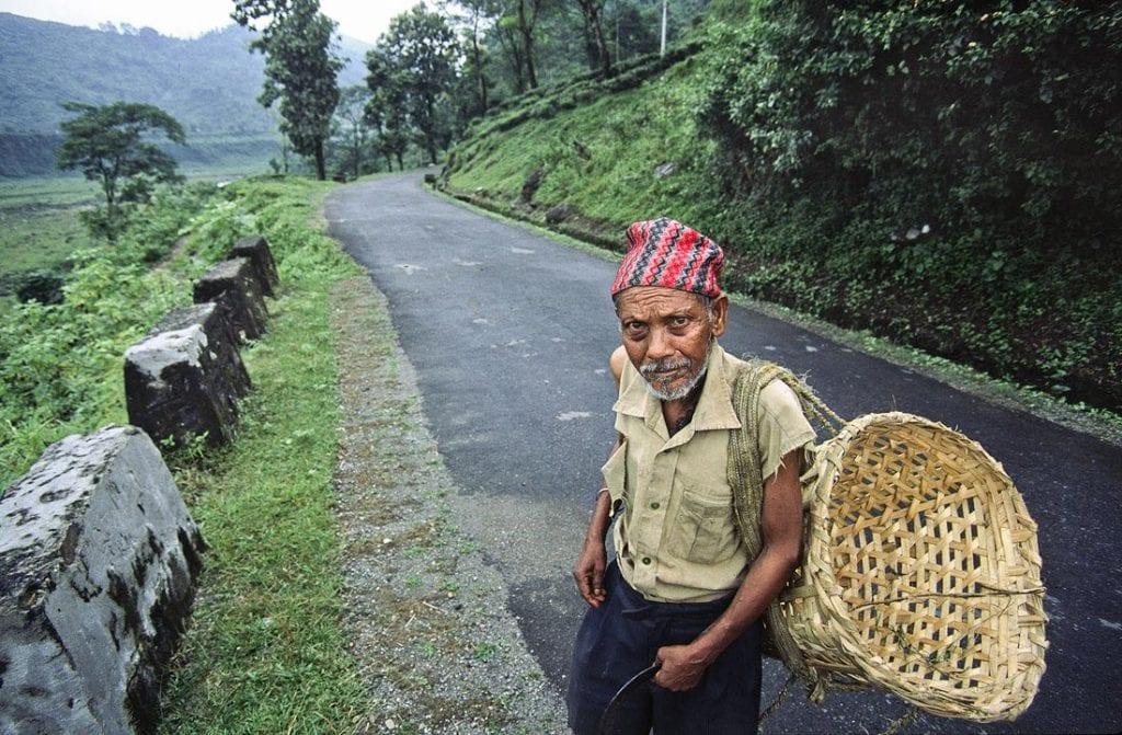 Elderly tea picker, near Gorubathan, Darjeeling District, West Bengal, India