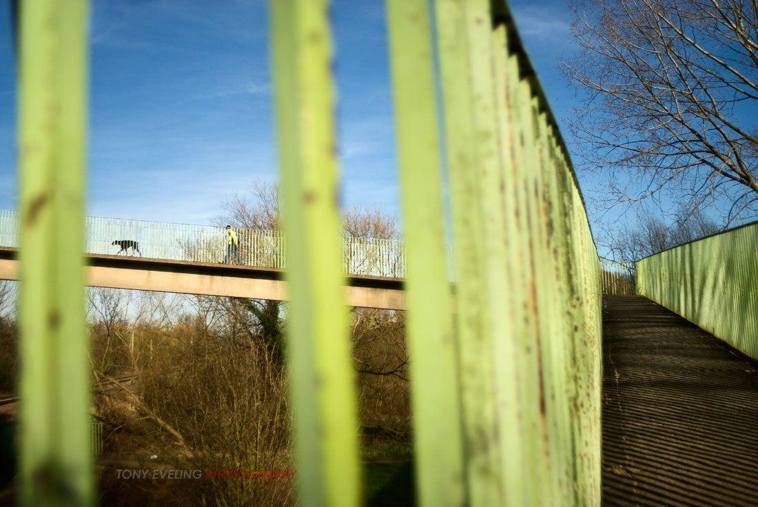 Bridge over a railway line, view of a man walking a dog as viewed through a set of railings